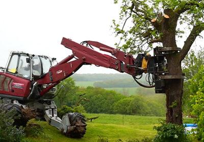 Abattage d'arbres au grappin-coupeur